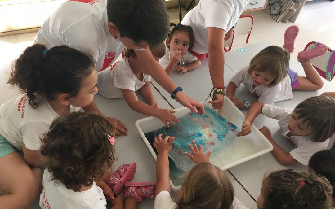 Melting Ice Science Experiment!!