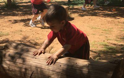 La experiencia directa como aprendizaje fuera del aula (Parte I)