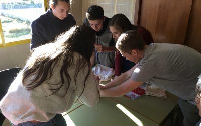 El reto innovador que nos propuso la Universidad Europea