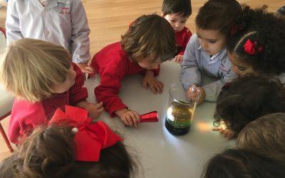 Nuestros pequeños científicos. Trabajo en equipo como herramienta de aprendizaje en las primeras etapas educativas