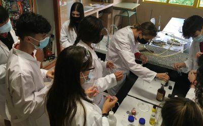 PRÁCTICAS LABORATORIO: Identificamos las propiedades de los glúcidos, lípidos y proteínas.